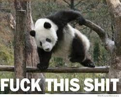 Fuck This Memes - fuck this shit panda weknowmemes