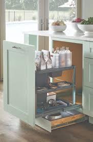 Home Depot Martha Stewart Kitchen Cabinets by 139 Best Organizing Your Kitchen Images On Pinterest Kitchen