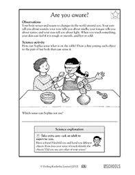 1st grade 2nd grade kindergarten science worksheets are you