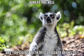 Lemur Meme - my lemur meme steemkr