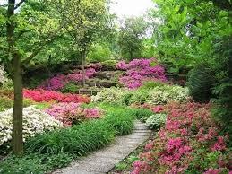 immagini di giardini fioriti giardini fioriti immagini progettazione giardini esempi ed
