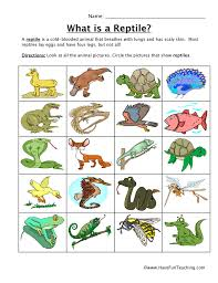 animal worksheets page 4 of 4 have fun teaching