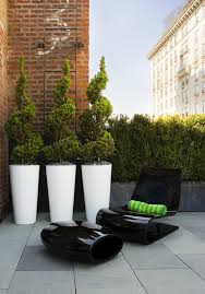 Topiary Planters - like the spirals maybe three in each planter u2014then lush sunflowers