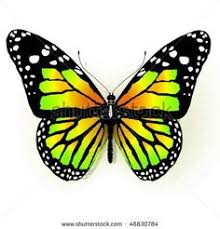 beautiful monarch butterfly tattoos and meaning part 8 tattoos