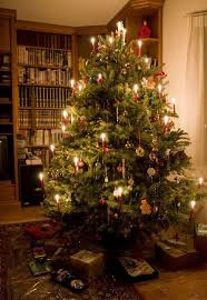 364 best ana rosa christmas traditional images on pinterest ana