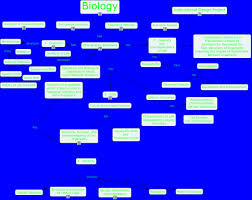 Photosynthesis Concept Map Biology Concept Map What Is Biology