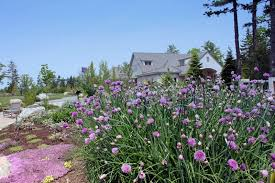 Coastal Maine Botanical Gardens Weddings 8 This Coastal Maine Botanical Gardens Weddings