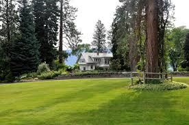 across the crescent lawn picture of summerland ornamental