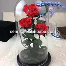 glass roses happy valentines day stem glass preserve roses in glass