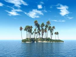Pom Trees Palm Trees Images Palm Trees On Island Hd Wallpaper And Background