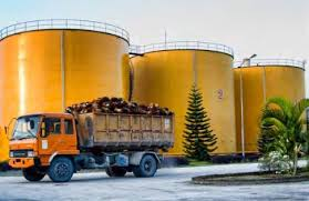 Minyak Cpo minyak sawit indonesia pemerintah mengubah kebijakan ekspor cpo