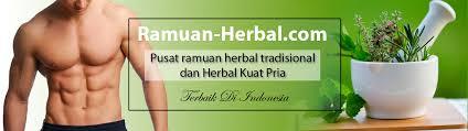 wow 8 daun ini bisa dijadikan obat kuat pria lho ramuan herbal
