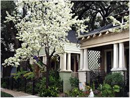 New Orleans Style Homes 92 Best New Orleans Real Estate Images On Pinterest New Orleans