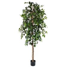 artificial trees artificial ficus tree green 6ft indoor artificial tree by olore