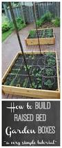 Raised Bed Vegetable Garden Design by Best 20 Raised Beds Ideas On Pinterest Garden Beds Raised Bed