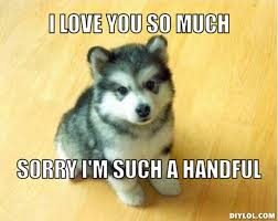 Dog Meme Generator - wpid resized baby courage wolf meme generator i love you so much