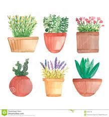 watercolor cactus in pots on shelf stock vector image 55602781