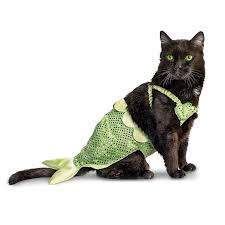 Halloween Costumes Cats Petco Mermaid Halloween Costume Cats Hahahaha Cat
