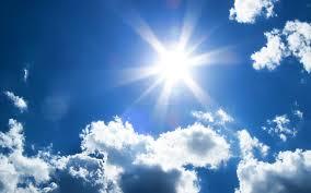 sunshine week first amendment foundation goes to bat for sunshine week first amendment foundation goes to bat for florida s right to know florida politics