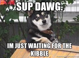 Sup Dawg Meme - sup dawg im just waiting for the kibble cool dog meme generator