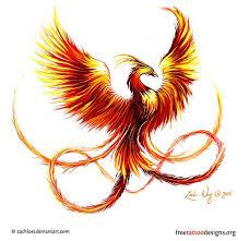 39 best phoenix bird tattoo images on pinterest phoenix bird