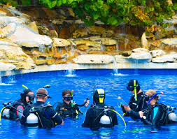 scuba diving courses global dive academy