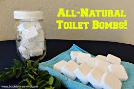 Acid For Bathroom Cleaning Your Toilets Naturally With Diy Toilet Bombs Backdoor Survival