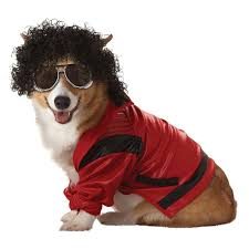 Halloween Costumes Michael Jackson Cutest Halloween Costumes Dogs Fruitwishes