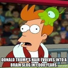 Fry Meme Maker - donald trump s hair evolves into a brain slug in 1 000 years