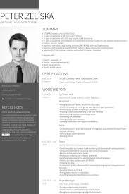 It Team Lead Resume Sample by Team Lead Resume Samples Visualcv Resume Samples Database