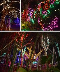 Zoo Lights by Channeling My Inner Child At Houston Zoo Lights U2013 Red Shoes Red Wine