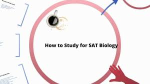 how to study for sat biology youtube