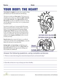 free parts of the heart worksheets human hearts with labels to