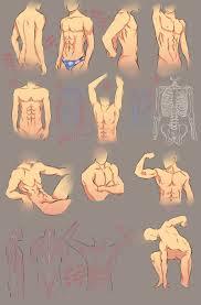 Human Anatomy Male More Anatomy Tips By Moni158 On Deviantart Anatomy Male Body