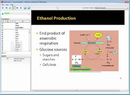 enzyme kinetics a biofuels case study youtube