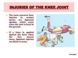 Anatomy Of Knee Injuries Anatomy Of The Knee Joint