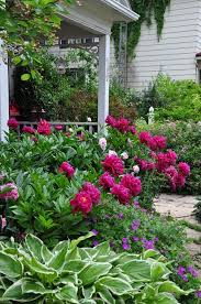 cottage garden with peonies my favorite flowers porch patio