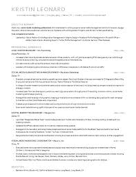 example of a professional resume resume to hire free resume example and writing download 87 surprising a professional resume examples of resumes