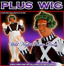 Oompa Loompa Costume Fancy Dress Costume Willy Wonka Oompa Loompa Wig Xl