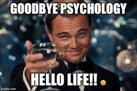 Psychology Meme - leonardo dicaprio cheers meme imgflip