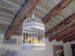 home interior bird cage u2013 interior design