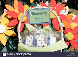 indiana plymouth marshall county blueberry festival soap lawn
