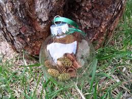 backyard nature made ornaments goexplorenature