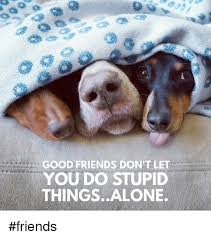 Good Friends Meme - good friends don t let you do stupid thingsalone friends being