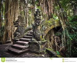 Nir Pearlson River Road 40 Best Bali Is My Happy Place Images On Pinterest Beautiful