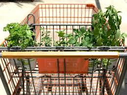 diy herb garden how to create a diy herb garden in less than an hour