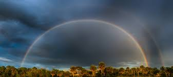 the power of a rainbow tracing the meteorological phenomenon in