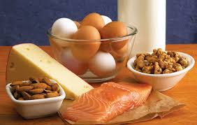 what a protein diet is and how to choose the right one