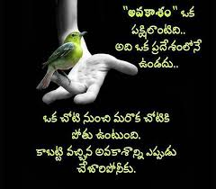 happy valentines day quotes in telugu messages wallpapers
