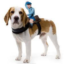 costumes for dogs dog riders pet costumes the green
